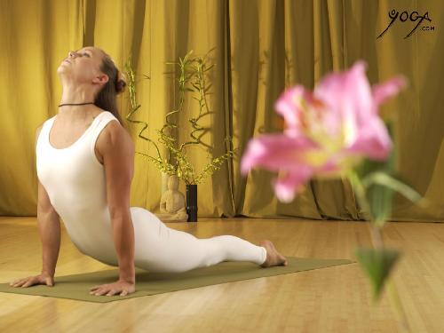 yoga_background_4_large28129