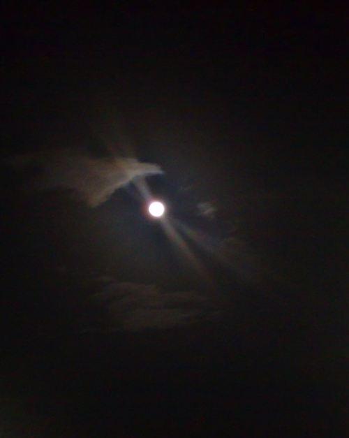 Månen8